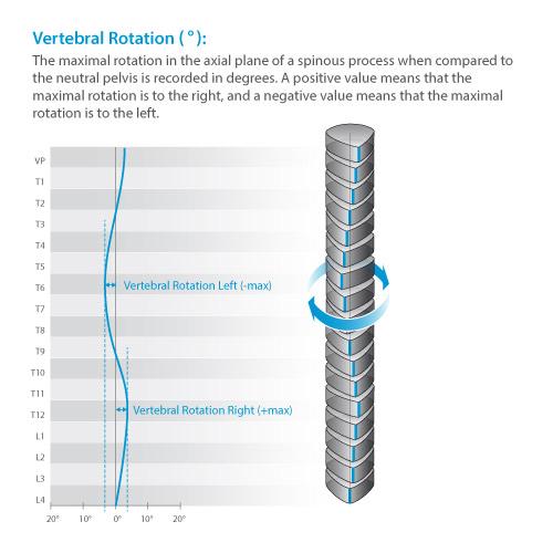 DIERS statico parameter: vertebral rotation